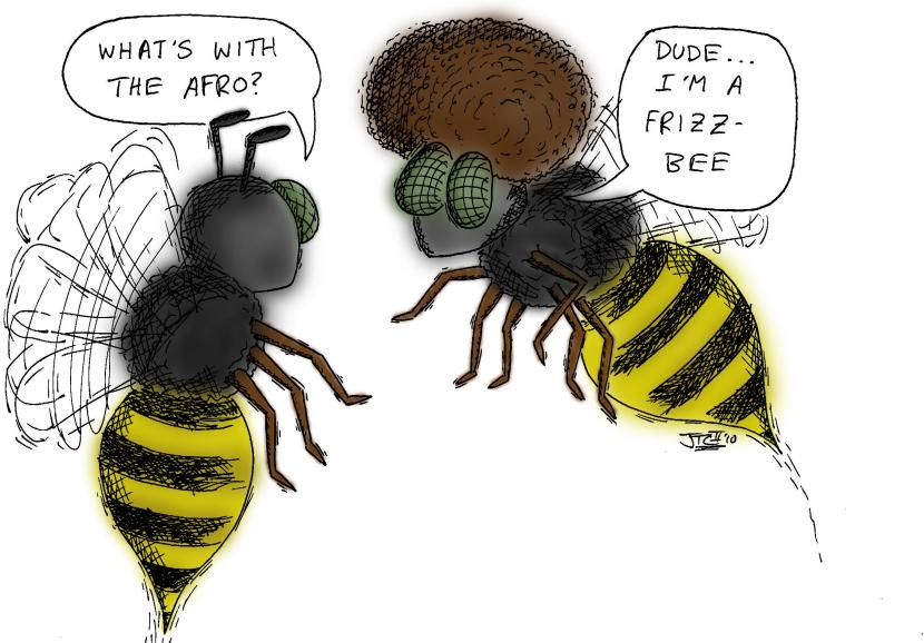 bees-knees frisbee